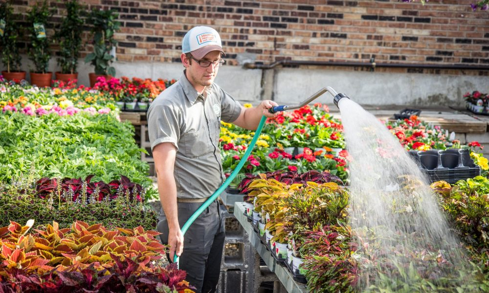 Meet Nathan Fasel Of Fasel And Sons Garden Center In Oak Lawn   Voyage  Chicago | Chicago City Guide
